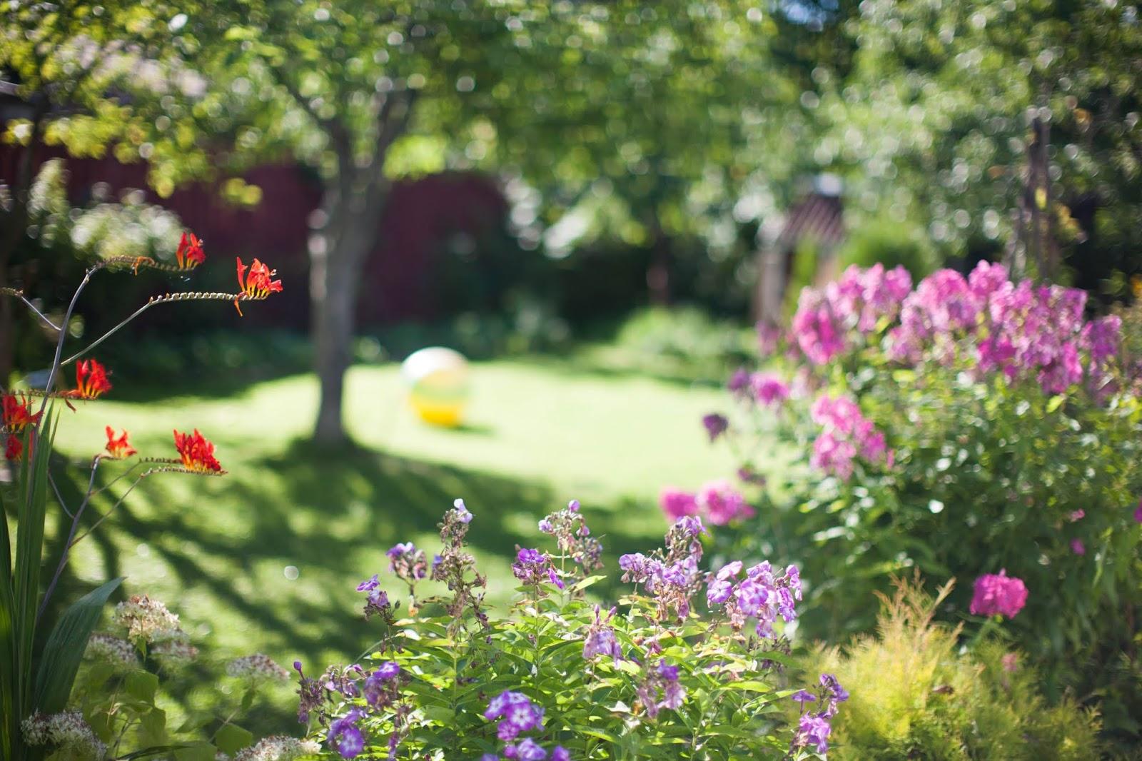 tuin zomer hitte